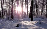 Winter Fränkische Schweiz